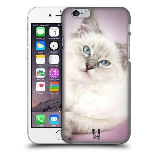 Etui plastikowe na telefon - Popularne Rasy Kotów Ragdoll Biały, kolor biały
