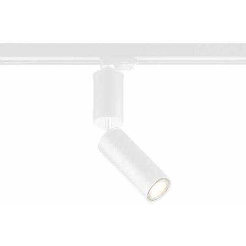 Reflektorowa LAMPA sufitowa SHIMA 7697 Shilo metalowa OPRAWA tuba do 3-fazowego systemu szynowego biała