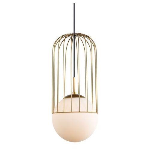 Druciana LAMPA wisząca MATTY MDM-3940/1 GD Italux metalowa OPRAWA drut ZWIS szklana kula ball klatka simon loft złota (5900644439691)