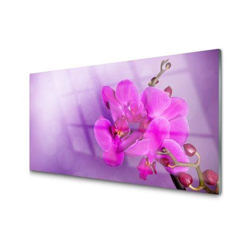 Tuluppl Obraz Akrylowy Kwiaty Płatki Storczyk Cafe Cafe