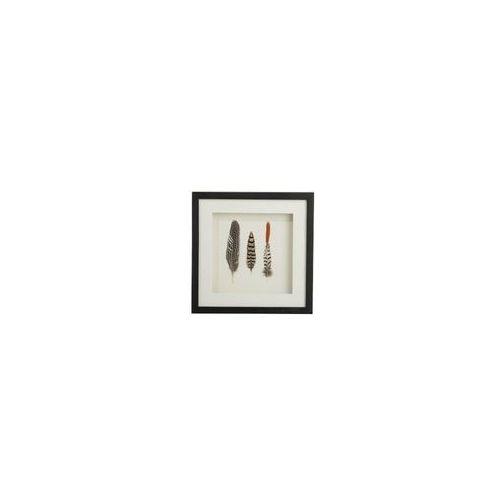 Obraz dekoracyjny Feathers 3 black, 149980 (11997695)