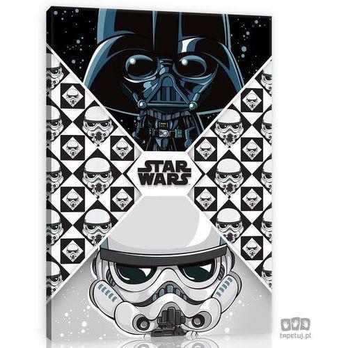Obraz Star Wars: Lord Vader & Szturmowiec 11667, 11667