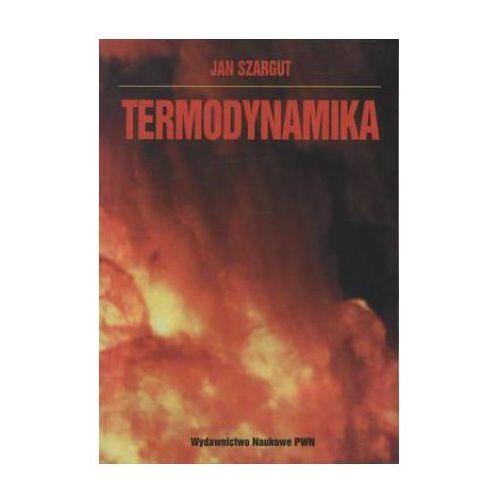 Termodynamika (9788301130862)