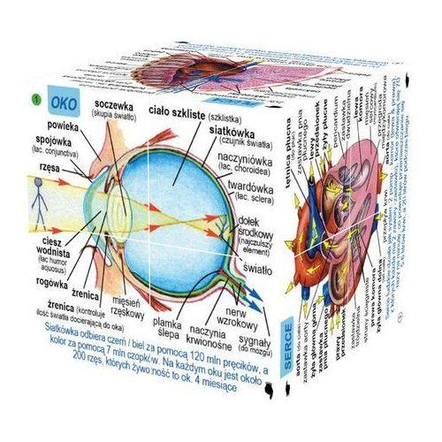Cube Book Kostka edukacyjna Ludzkie ciało Poziom 3 zaawansowany