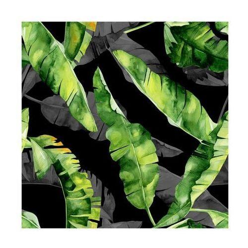 Panel kuchenny szklany Monstera black 60 x 60 cm Alfa-Cer (5902027035780)