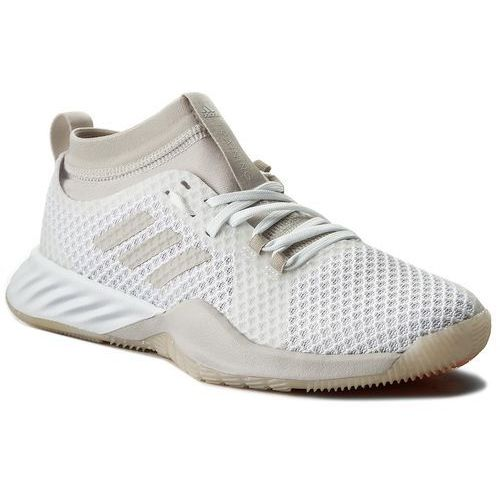 Buty adidas - CrazyTrain Pro 3.0 W CG3480 Ftwwht/Chapea/Hireor