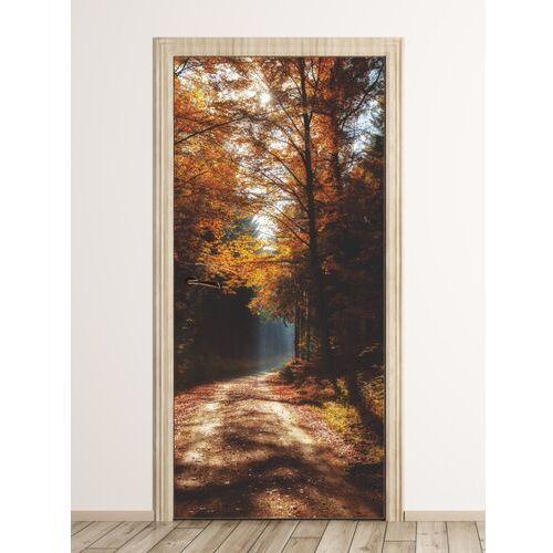 Wally - piękno dekoracji Fototapeta na drzwi leśna droga skąpana słońcem fp 6048