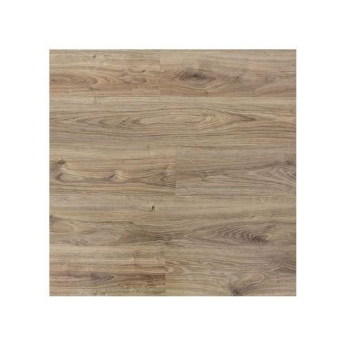 Panel podłogowy laminowany DĄB PUŁAWSKI AC4 8 mm PROMO FLOORING, kolor dąb