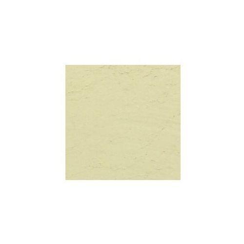 Pigment kremer - ziemia zielona z werony 41820 marki Retro image