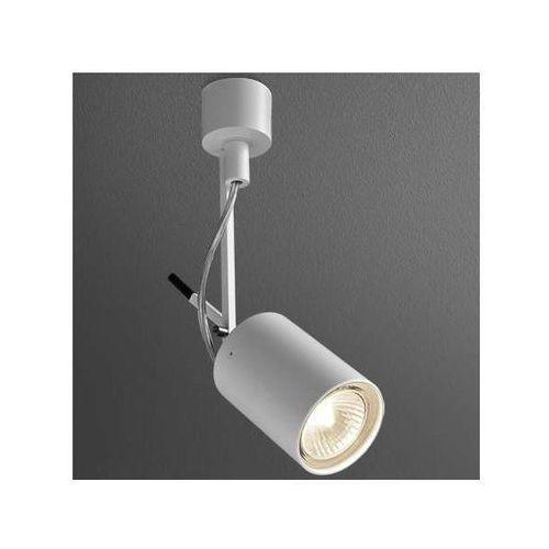 Aqform Spot lampa sufitowa petpot fine 13311-0000-u8-ph-kolor ścienna oprawa reflektorowa kinkiet na wysięgniku (1000000266221)