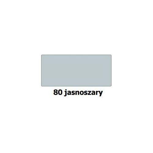 Karton kolorowy 50x70 cm jasnoszary nr 80