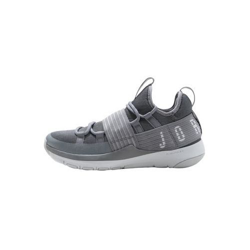 Jordan TRAINER PRO Obuwie do koszykówki cool grey/pure platinum (0884497281551)