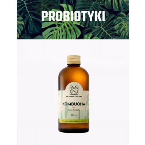 KOMBUCHA Trawa Cytrynowa + Kaffir Coldpress / Detoks sokowy (5907222215029)