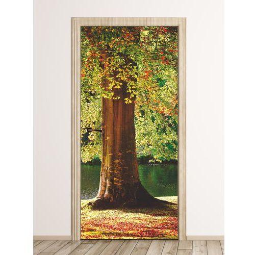 Fototapeta na drzwi pień drzewa fp 6233 marki Wally - piękno dekoracji