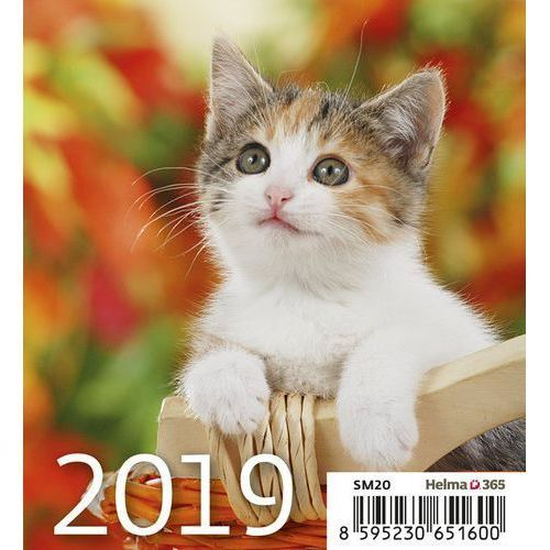Kalendarz 2019 Biurkowy Mini Kotki (8595230651600)