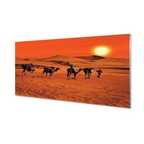 Obrazy na szkle Wielbłądy ludzie pustynia słońce niebo