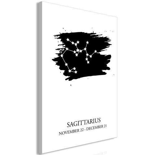 Obraz - znaki zodiaku: strzelec (1-częściowy) pionowy marki Artgeist