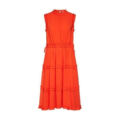Ted Baker Letnia sukienka 'Sinita' pomarańczowy, w 5 rozmiarach