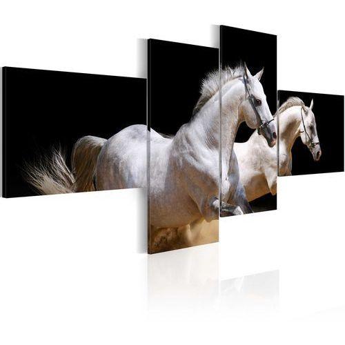 Artgeist Obraz - świat zwierząt - białe konie w galopie