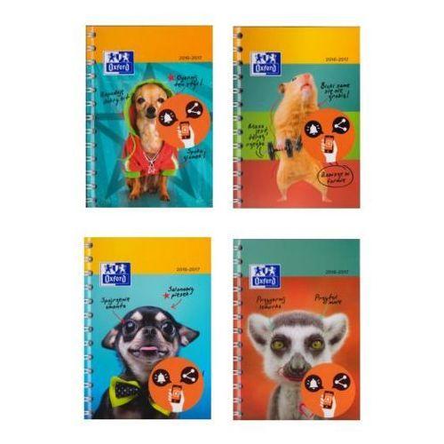 Kalendarz 2016/2017 Funny Pets (5904017035336)