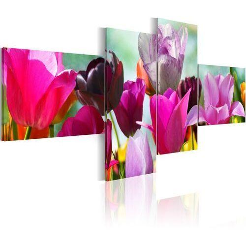 Artgeist Obraz - czar różowych tulipanów