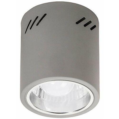 Plafon lampa sufitowa spot donald 1x60w e27 szary 2485 marki Rabalux