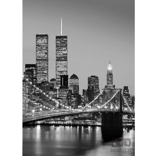Fototapeta Manhattan Skyline at Night 388