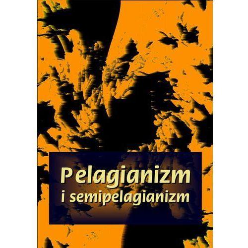 Pelagianizm i semipelagianizm. Darmowy odbiór w niemal 100 księgarniach! (115 str.)