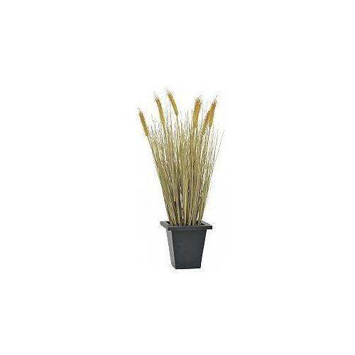 wheat ready to harvest 60cm , sztuczna trawa od producenta Europalms