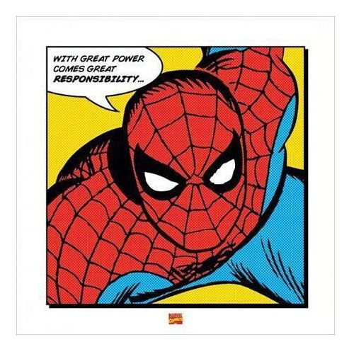Spider-man (With Great Power) - reprodukcja