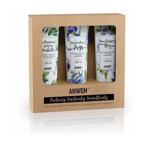 Anwen, wegański zestaw 3 odżywek do średniej porowatości (zielona herbata, irys, bez), 5907222404218
