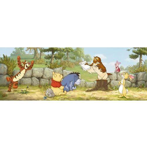 fototapeta Disney Kubuś Puchatek Tygrysek Lekcja 1412