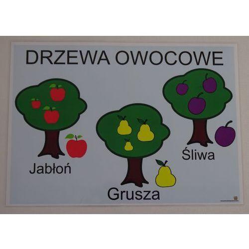 Drzewa owocowe - plansza demonstracyjna marki Bystra sowa