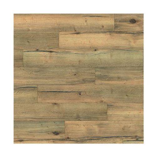 Panele podłogowe dąb orito ac5 10 mm marki Artens