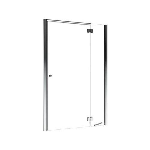 Drzwi prysznicowe VALENCE 120 cm x 185 cm IRIDUM (5902738008936)