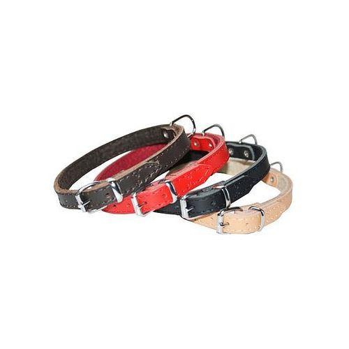 Dingo  obroża skórzana podszyta filcem 1,8x45cm czerwona (5904760120303)