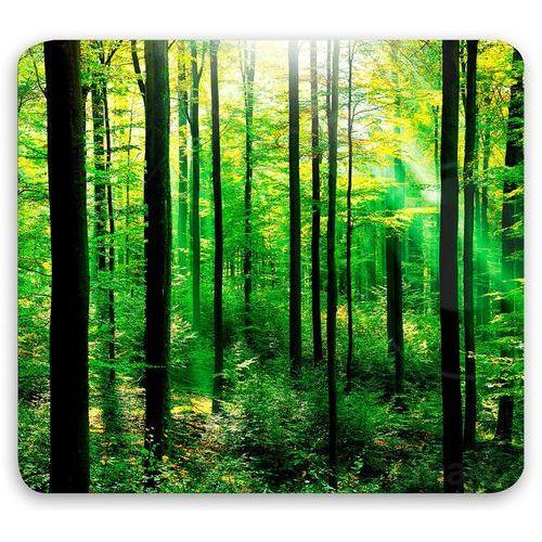 Szklana płyta ochronna FOREST na kuchenkę – duża, WENKO, B015N7EQQ8
