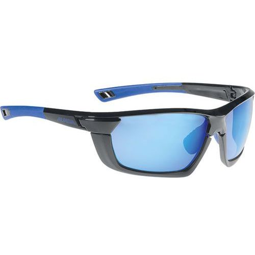 Alpina Okulary słoneczne tri-scray multiframe a8583335