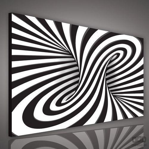 Consalnet Obraz czarno-biała abstrakcja pp1586