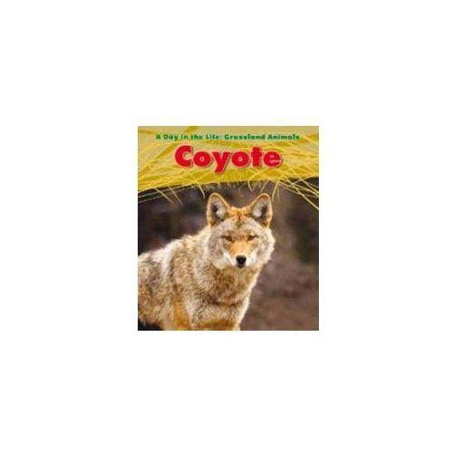 Louise Spilsbury - Coyote
