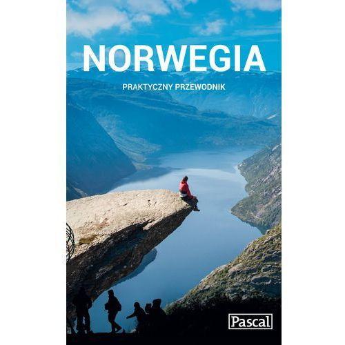Norwegia praktyczny przewodnik 2015 - Wysyłka od 3,99 - porównuj ceny z wysyłką