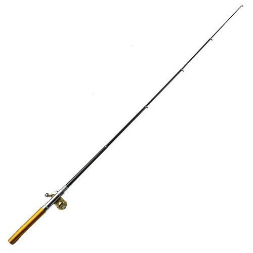 20 cm golden mini steel pocket pen fishing rod pole + metal fishing wheel marki Gearbest