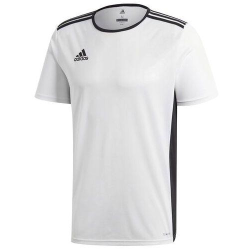 Adidas Koszulka dla dzieci entrada 18 jersey junior biała cd8438/cf1044