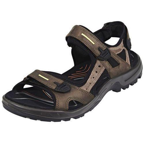 Ecco offroad sandały mężczyźni brązowy 47 2018 sandały sportowe