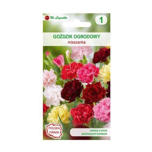 W. legutko Goździk ogrodowy mieszanka nasiona tradycyjne 0.5 g (5903837121021)