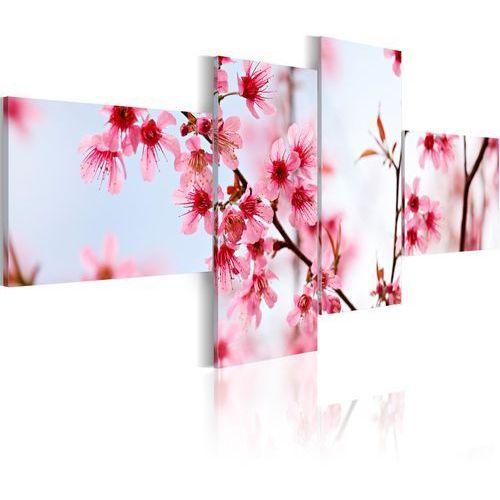 Artgeist Obraz - piękno kwiatów wiśni