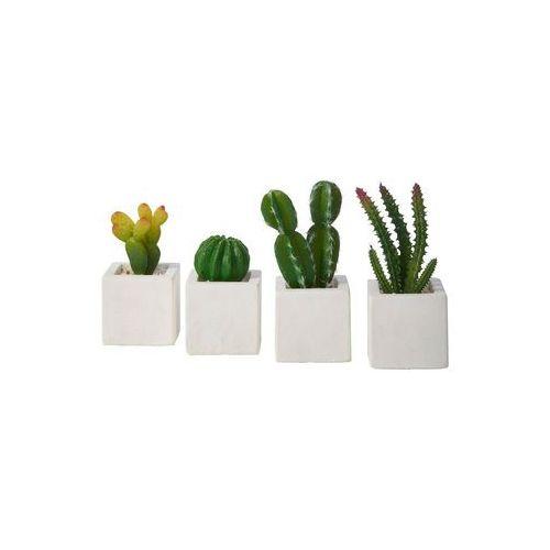 """Sztuczne rośliny """"Kaktusy"""" (4 części) bonprix ciemnozielono-biały"""
