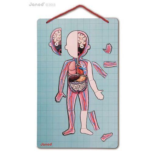 Układanka magnetyczna ciało człowieka marki Janod