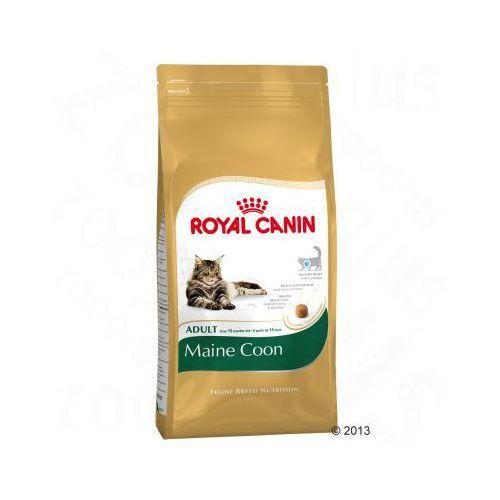 Royal canin maine coon adult - 2 kg. Najniższe ceny, najlepsze promocje w sklepach, opinie.