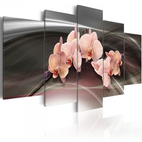 Obraz - Różowa orchidea na ciemnym tle (100x50 cm)